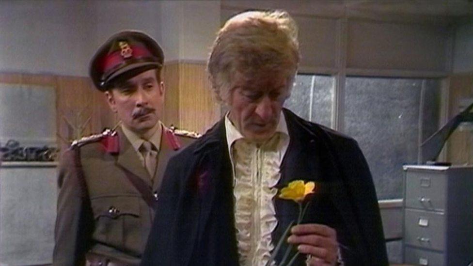 Brig Doctor Daffodil