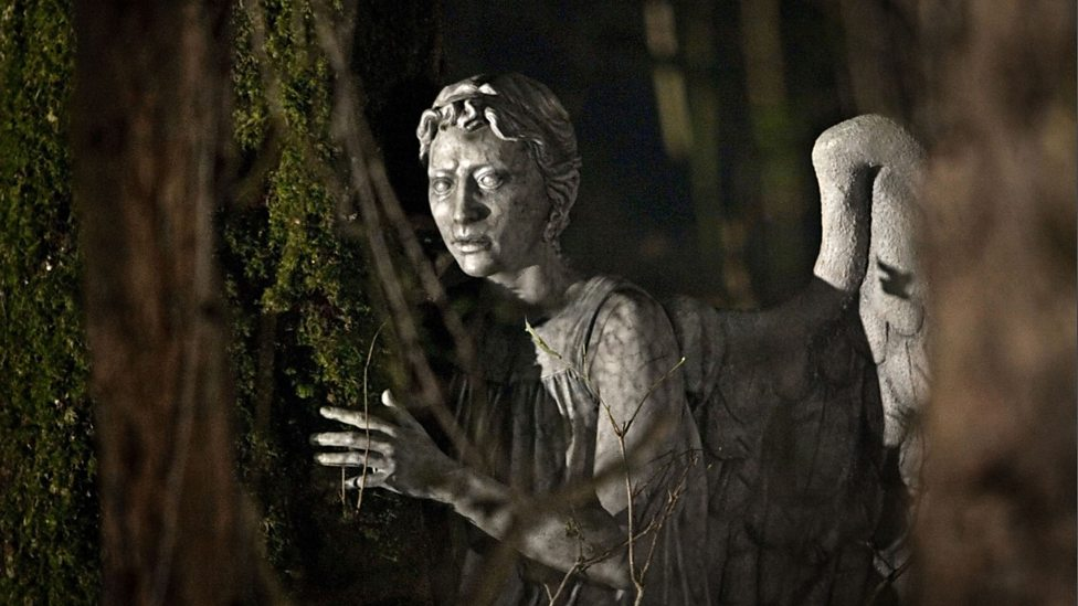 Flesh and Stone Weeping Angel